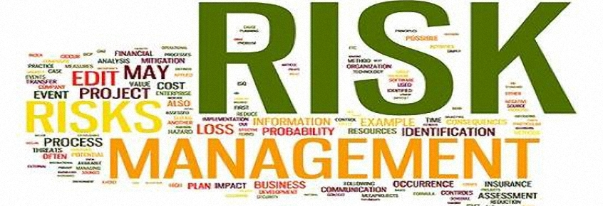 RISK MANAGEMENT IN SANITÀ