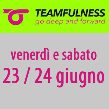 TEAMFULNESS